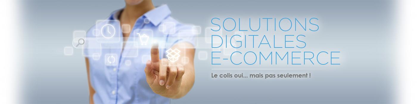 Logisticien e-commerce : système d'information connecté